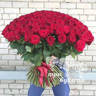 Букет из 201 красной розы 70 см